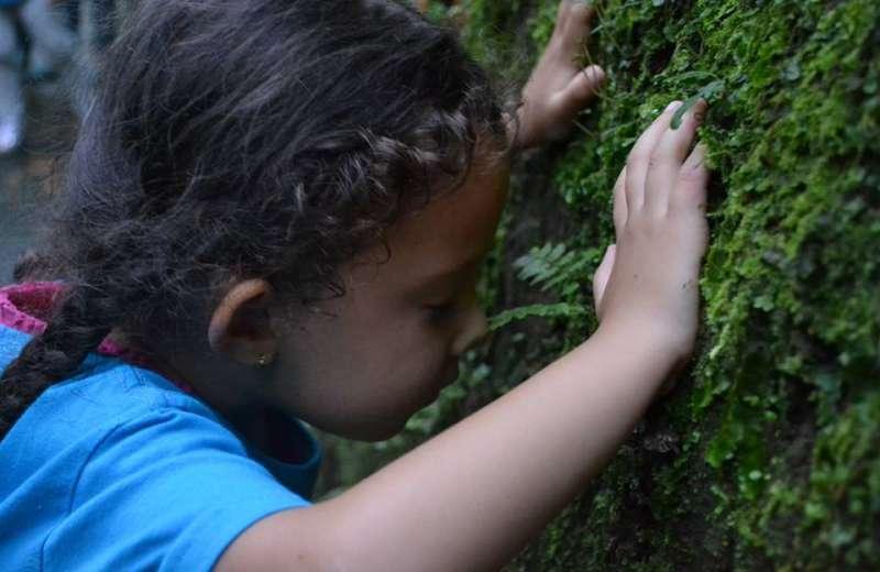 Ideas para el cuidado del medio ambiente