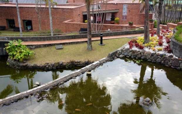 Abril comienza con cultura en el Museo del Oro Quimbaya