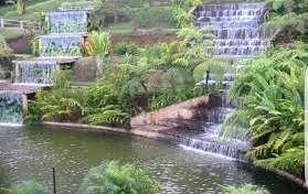 Hay un proyecto urbanístico para renovar el Parque de la Vida