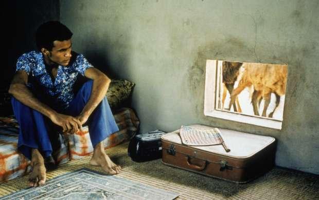 Una película africana que dándole la vuelta al mundo llega a la universidad del Quindío