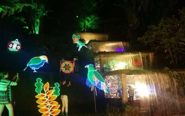 El parque de la vida es nuevamente el escenario para el alumbrado navideño de la Edeq